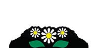 Blumenhaus Gänseblümchen